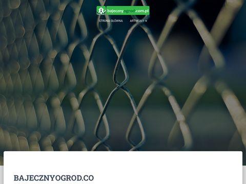 Bajecznyogrod.com.pl zakładanie trawników