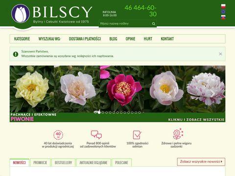 Bilscy.info gospodarstwo ogrodnicze