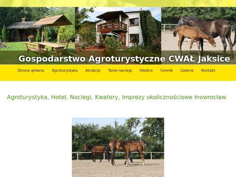 Agro-konie.pl agroturystyka Cwał