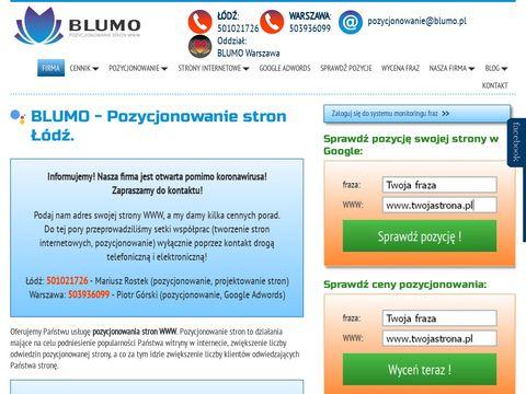 Blumo.pl pozycjonowanie stron Łódź