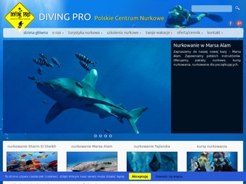 Diving Pro - kursy nurkowania w Egipcie