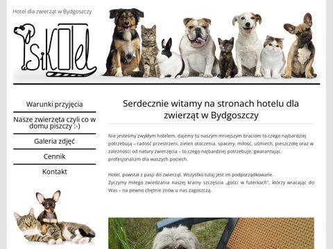 Psikotel.bydgoszcz.pl hotel dla fretek