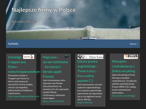 Pgi.com.pl armatura grzewcza sklep