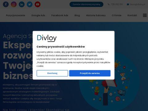 Divloy.pl kampanie Google Ads FB Ads SEO