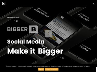 Biggerb.pl social media agency
