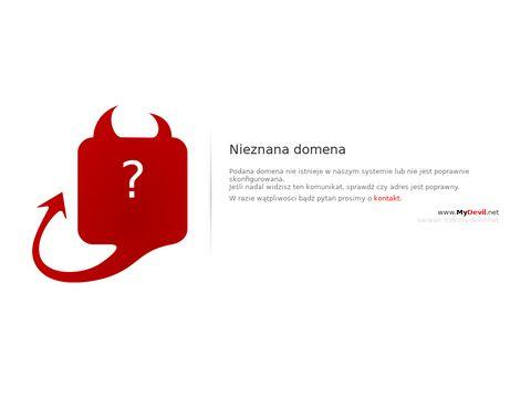 Grajtanio.pl figurki z gier
